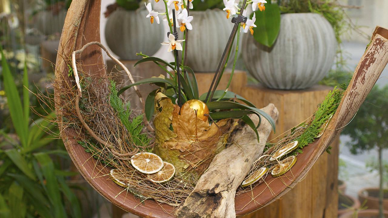 Weihnachtsausstellung blumen faes for Weihnachtstrends 2016 floristik